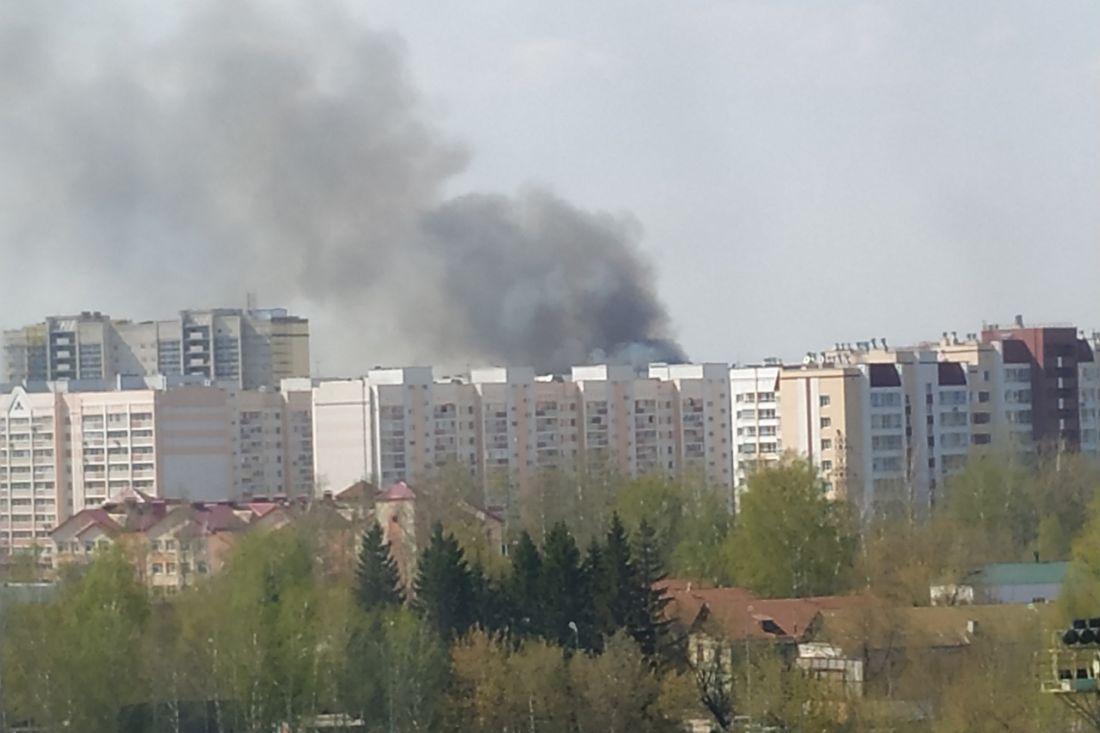 Из-за пожара возле железной дороги начальника пензенского управления ГОЧС отпустили с сессии Гордумы